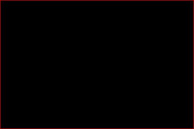 پرچم ابومسلم - درفش ابومسلم - پرچم های ایران از آغاز تا کنون - درفش های ایران از آغاز تا کنون