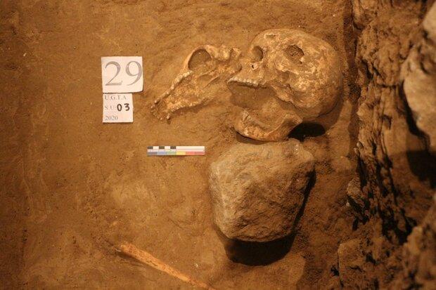 آیا اسکلتهای تازه پیدا شده در تخت جمشید با حمله اسکندر ارتباط دارند؟