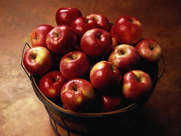 سیب نماد سپندارمذگان